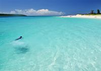 前浜ビーチの青い海