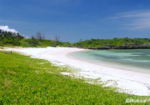 穏やかなビーチ