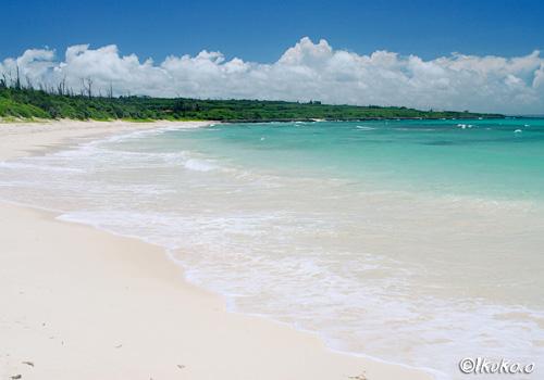 長く続くビーチと寄せる波