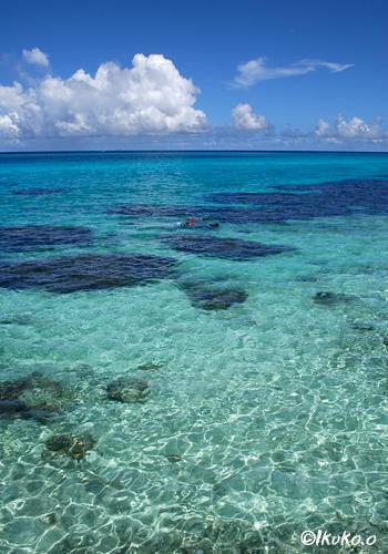 サンゴ礁の海と入道雲