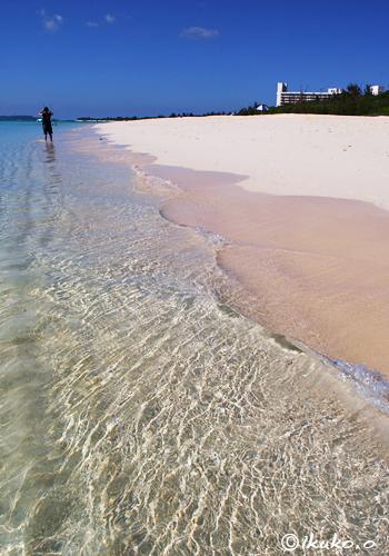 砂浜に刻まれた波紋