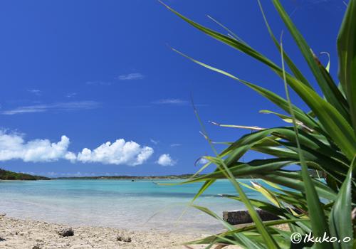 名も無い小さな浜