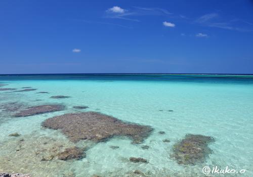 フナクスの珊瑚礁