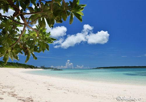 モンパとビーチの風景