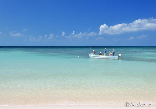 青い海を進む漁船