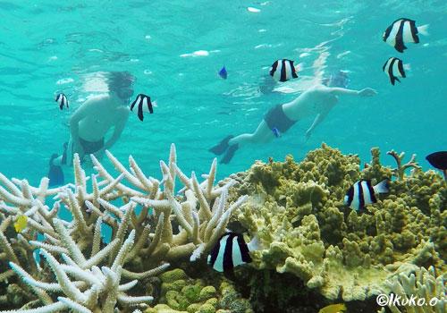 水中風景を楽しむ観光客