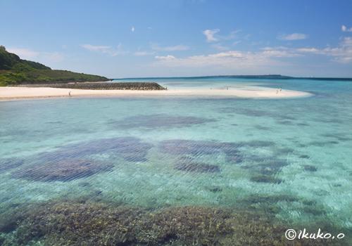サンゴ礁の海にできた砂洲