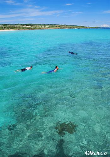 珊瑚礁の海と子供たち
