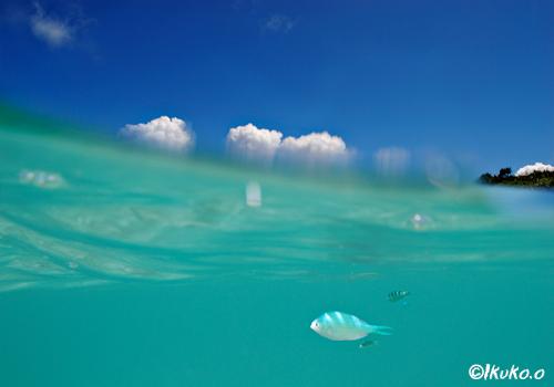 フナクスの海と空