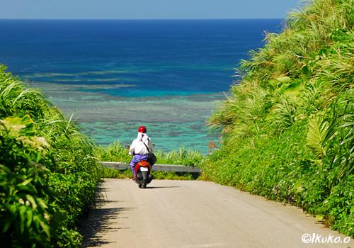青い海へ続く道