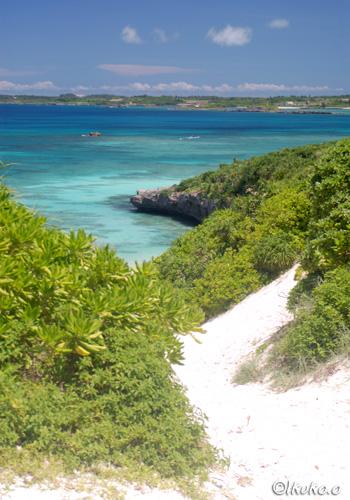 砂丘の上から見える青い海