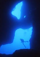 海中の芸術