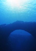 海中のアーチと深海の花