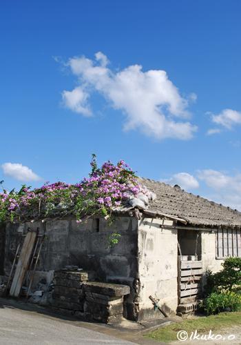 花をのせた物置小屋