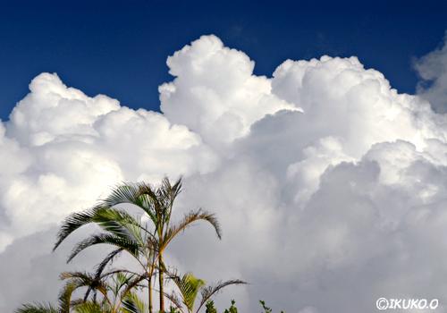 壁のような雲