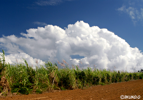 穴の開いた入道雲