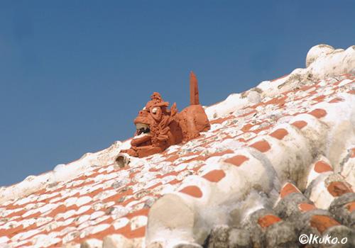 屋根の上のシーサー