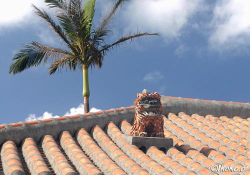 椰子と赤瓦とシーサー
