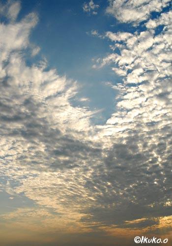風に飛ばされるうろこ雲
