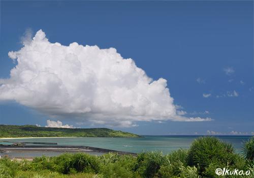 漁港の上の入道雲