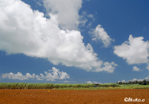長く伸びる雲