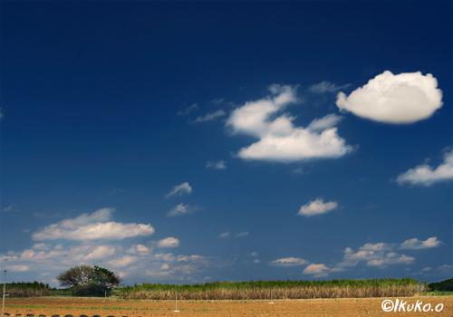 飛んでいく雲