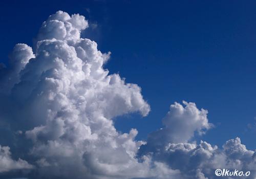 力強い入道雲