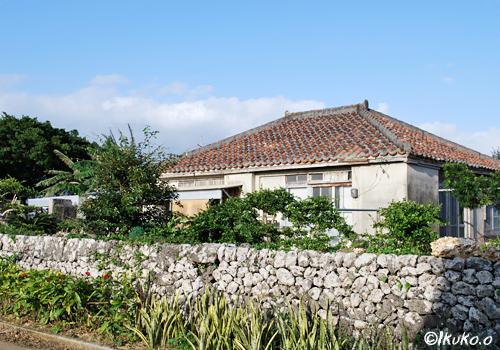 琉球石灰岩の塀と民家