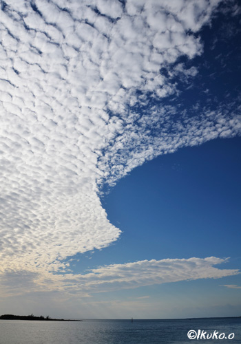 うろこ雲と青空