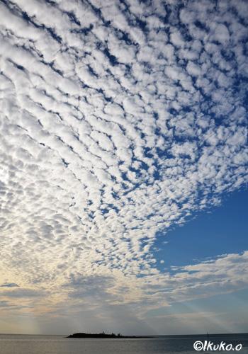 空いっぱいのうろこ雲