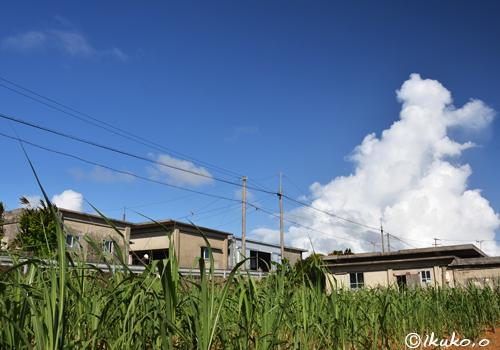 集落と入道雲