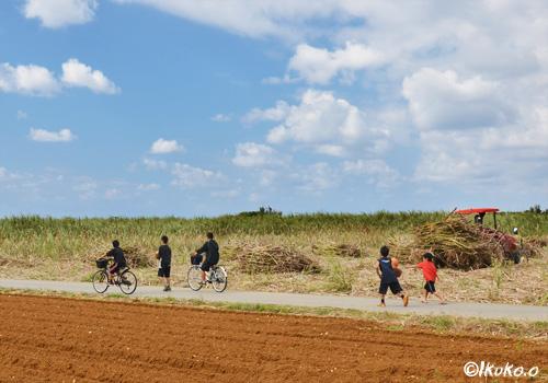 サトウキビ畑と子供たち
