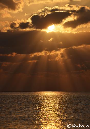 黄金色の光と海