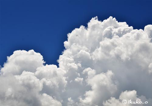 成長する入道雲