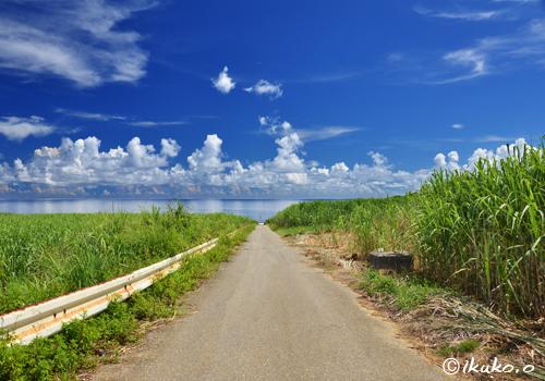 海へ続く道