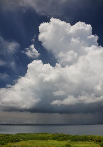 入道雲から垂れ下がる雨の幕