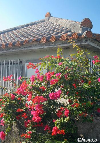 古い民家と花