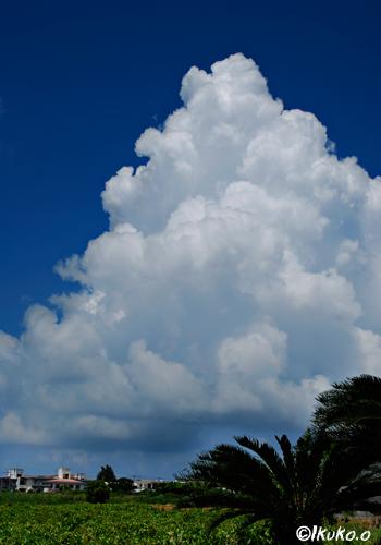 町の上に浮かぶ入道雲