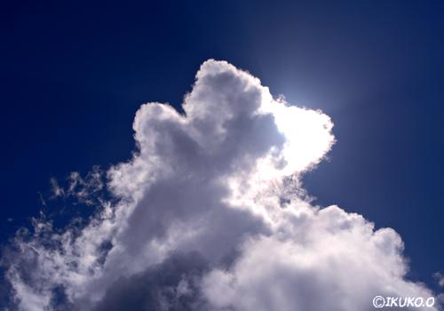 輝く入道雲