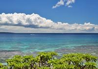 西側のサンゴ礁