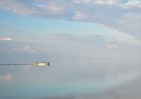 幻想的な早朝の海