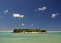 与那覇湾のパナリとマングローブ