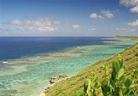 珊瑚礁の海