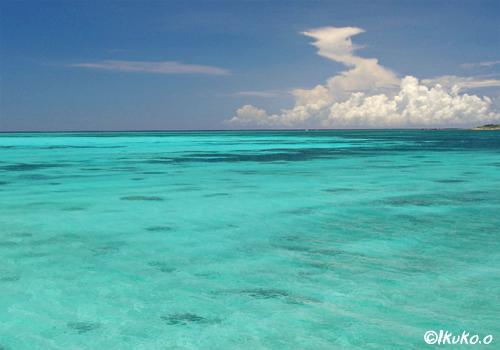真っ青な海と入道雲