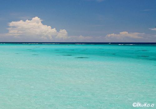澄んだ青い海