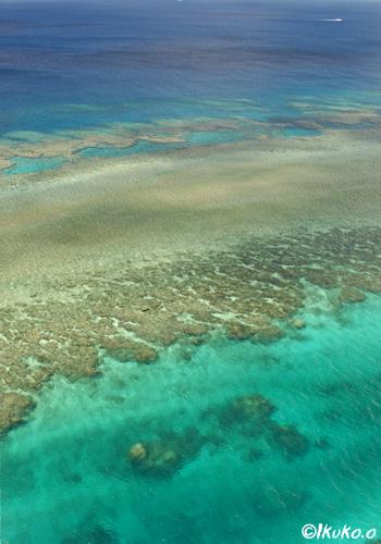 珊瑚礁の青い海