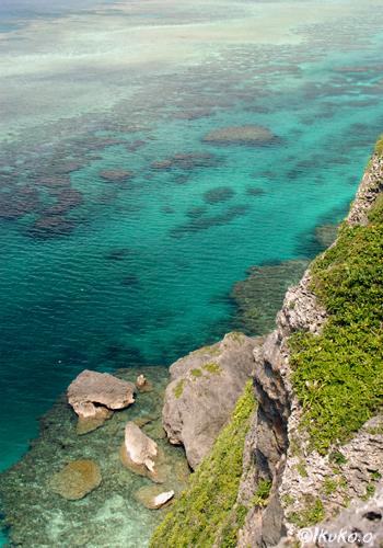 断崖の下の珊瑚礁