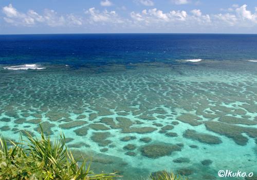 展望台から見える珊瑚礁