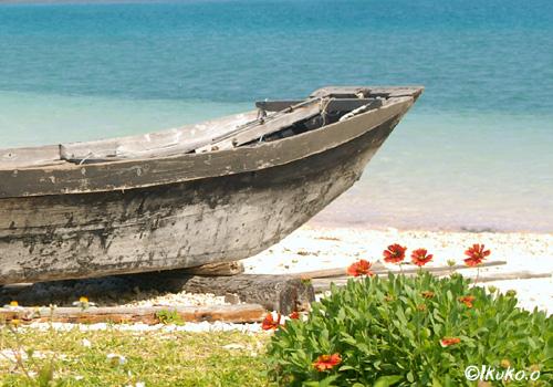 サバニと海と花