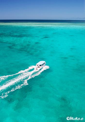 サンゴを見に行くグラスボート